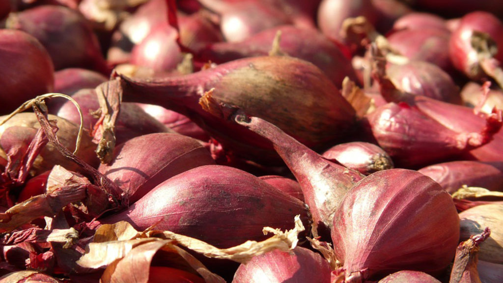 Shallots slices to get rid of toothaches