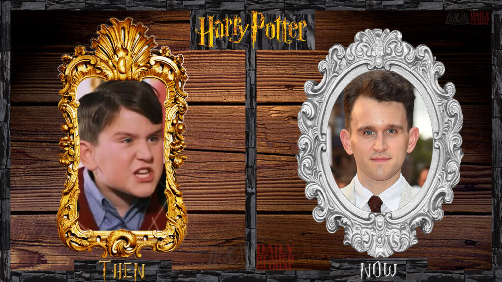 What is Dudley Dursley - Harry Melling doing now?